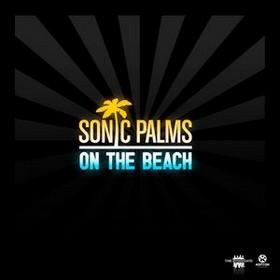 Sonic Palms перевод песен